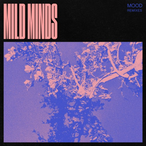 MOOD (Remixes) - Mild Minds